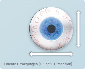 Lineare Bewegungen (1. und 2. Dimension)
